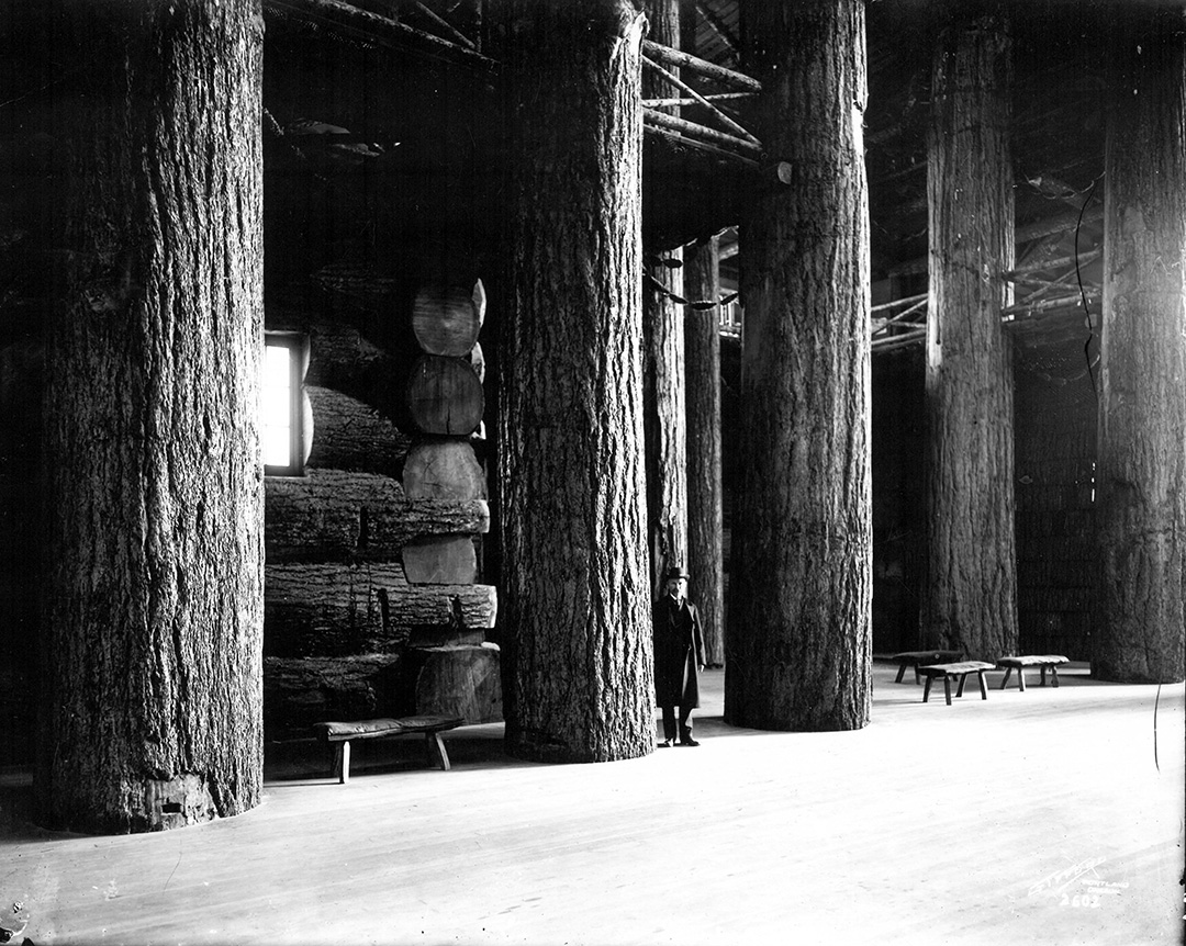 Interior of Forestry Building at Lewis and Clark Exposition. OHS Research Library, ba020726