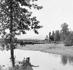 Hops Scene, South Yamhill River. Southern Pacific Railroad Collection, 1910. OrHi 105302