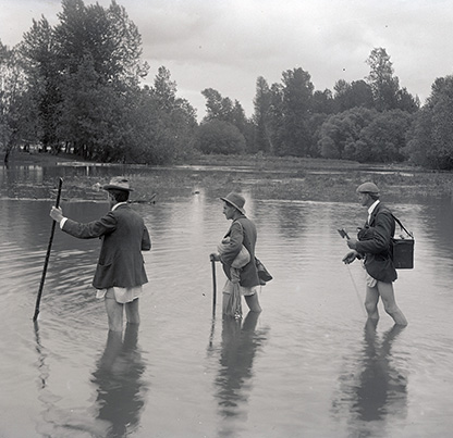 Ellis Hadley (First in line), William L. Finley (center), and Herman Bohlman (last) wading pantsless through water to photograph a red-tailed hawk's in 1902 near Portland, OR. Org. Lot 369, Finley A2652.