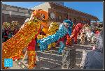 Dragon Dance and Parade, Sunday, February 7, 2016. Andie Petkus Photography