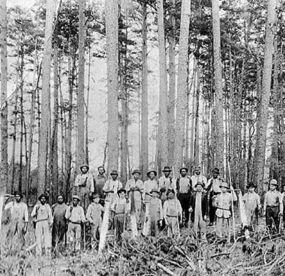 Maxville Loggers: This photograph was taken in Maxville. Photo courtesy of Dorothy Smith