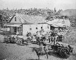 Portland's City Brewery at SW 11th and Oak, c. 1863. Mss 1722-a, bb011651