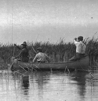 Dallas Lore Sharp (center) and two unidentified Audubon Game Wardens paddling in a canoe through the tules on Lower Klamath Lake, 1912. Org. Lot 369, Finley B0319.